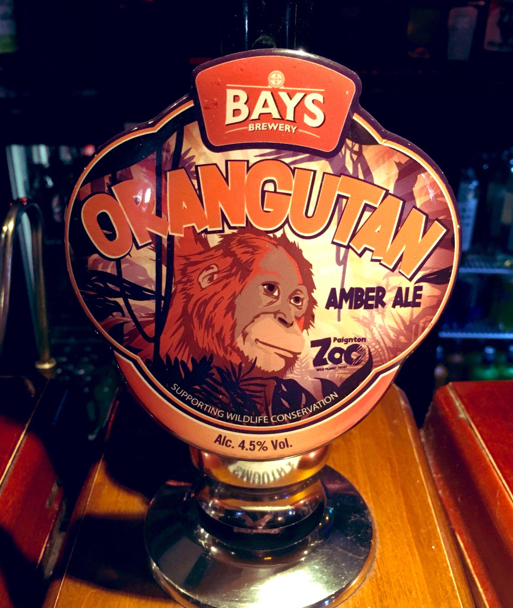 185: Orangutan