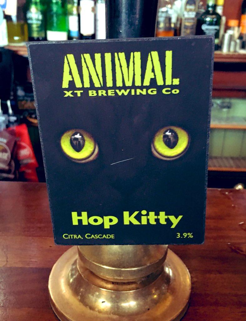 200: Hop Kitty