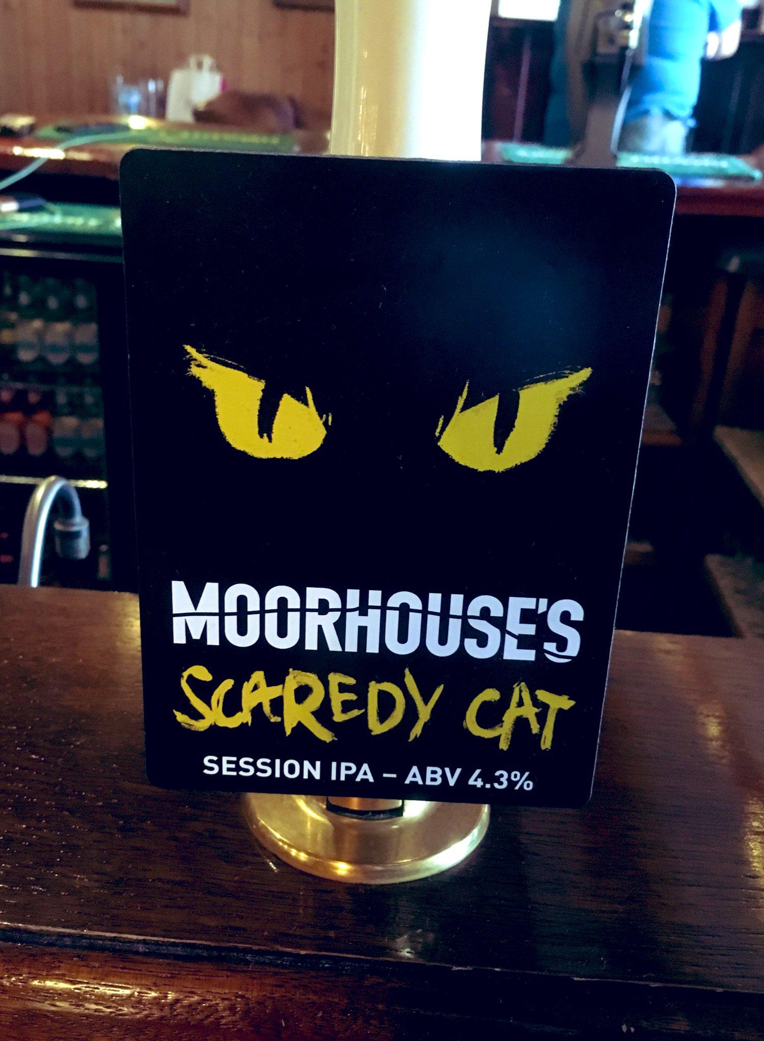 219: Scaredy Cat